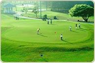 Bwin登录地址五月花国际高尔夫球会推杆练习果岭