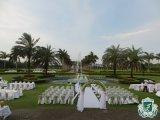 Bwin登录地址2014年6月24日婚礼