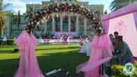 2014年8月15日 草坪婚宴