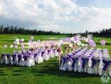2015年6月27日,浪漫草坪婚礼